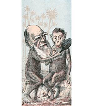 Darwinistlere