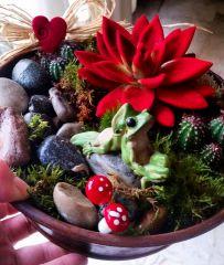 Bu kurbağalar sevgililer gününde bir ümit öpülmeyi mi bekliyor acaba!