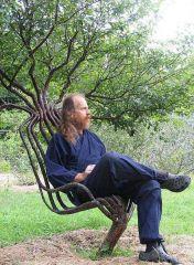 Sandalye Ağaç