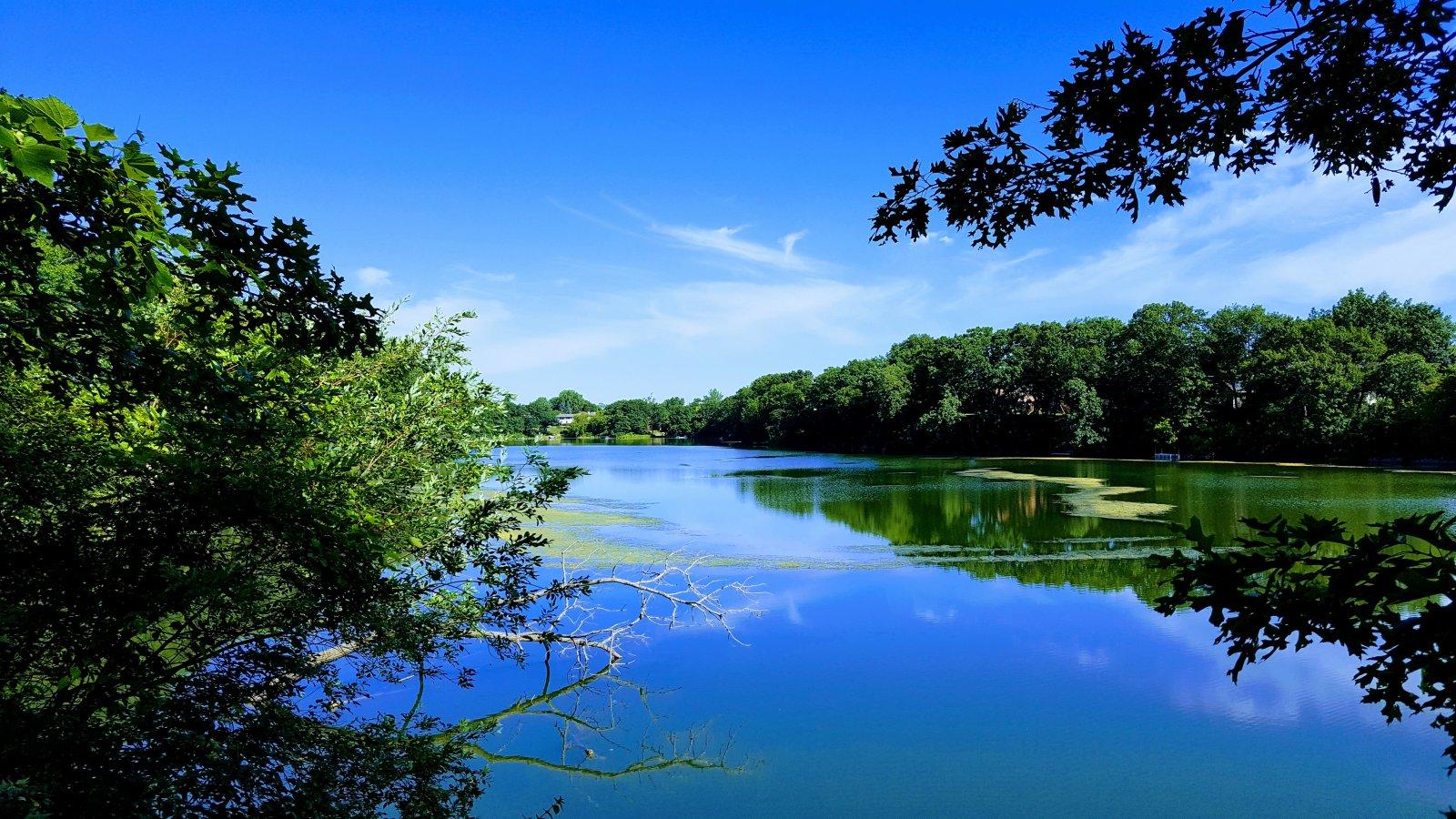 Yeşil ve Mavinin Buluşması