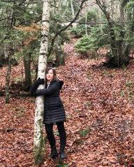 Ağacı bulunca sarılıcan