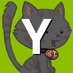 yalcin001